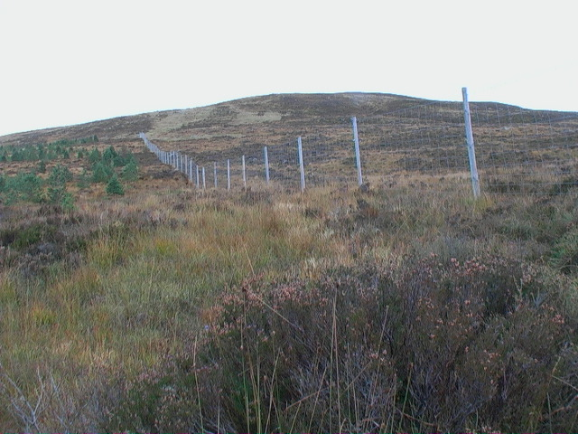 Forest fence on the flanks of Meall a' Bhobuir
