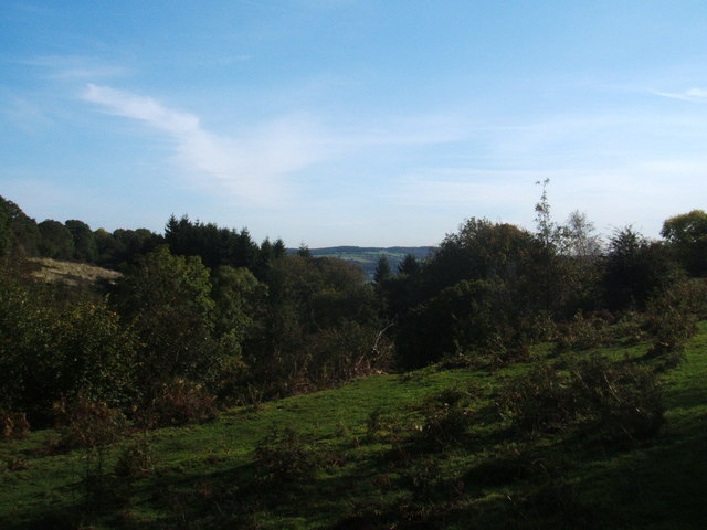 Top of Clough Wood, near Birchover