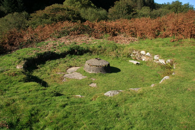 Remains of circular buddle