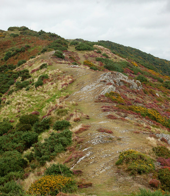 Circular walk from Solva to St Elvis and Dinas Fawr (2)