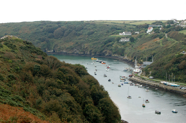 Circular walk from Solva to St Elvis and Dinas Fawr (5)