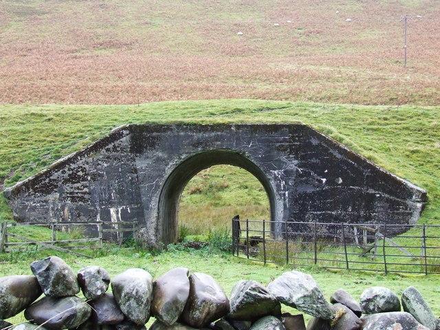 Animal Underpass...beneath disused Railway