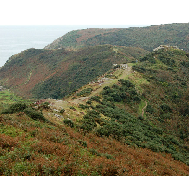 Circular walk from Solva to St Elvis and Dinas Fawr (6)
