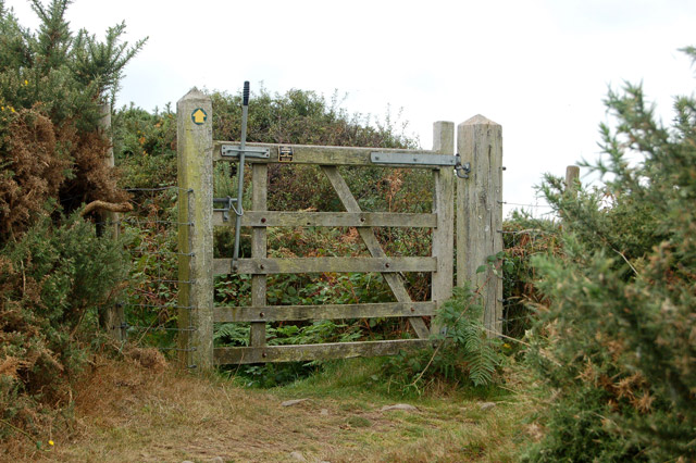Circular walk from Solva to St Elvis and Dinas Fawr (7)
