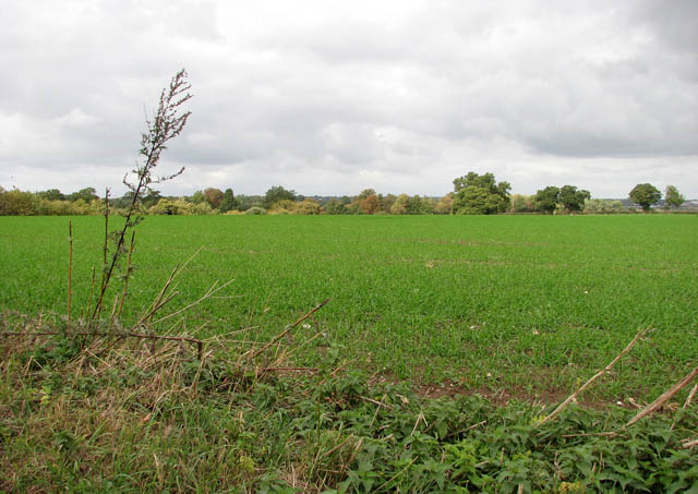 Field north of Easthill Lane
