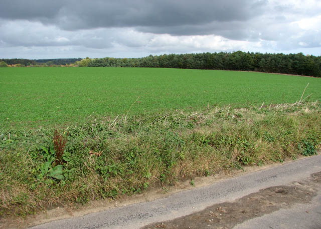 View north-east from Easthill Lane