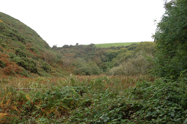 Circular walk from Solva to St Elvis and Dinas Fawr (9)