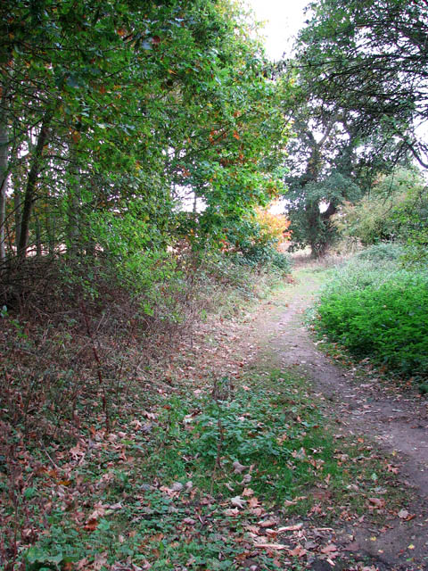 Path to Easthill Lane