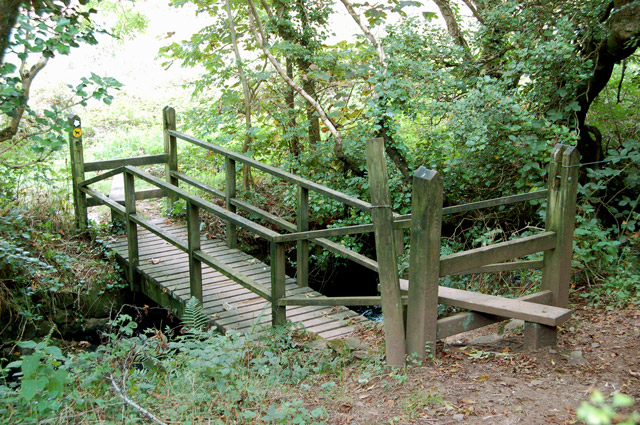 Circular walk from Solva to St Elvis and Dinas Fawr (10)