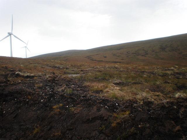 Looking along western boundary of wind farm