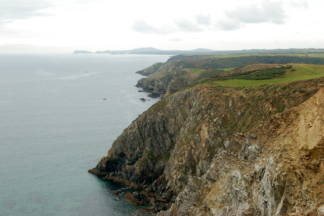 Circular walk from Solva to St Elvis and Dinas Fawr (22)