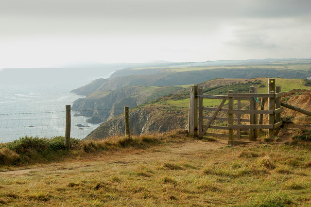 Circular walk from Solva to St Elvis and Dinas Fawr (24)