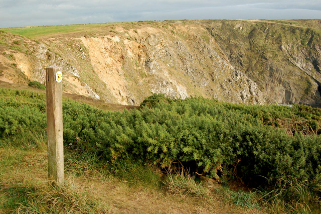 Circular walk from Solva to St Elvis and Dinas Fawr (26)