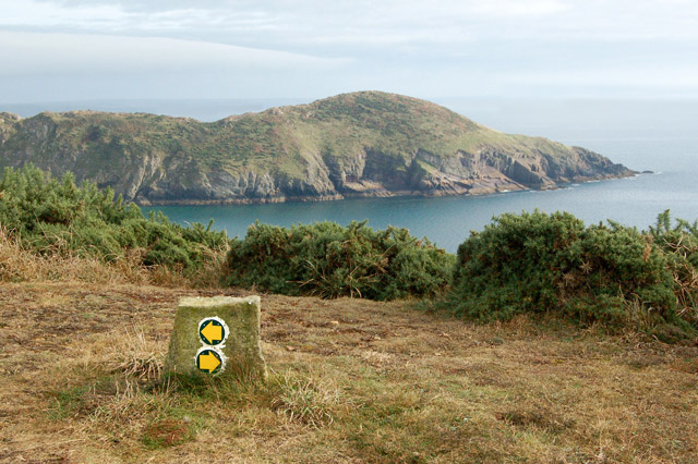 Circular walk from Solva to St Elvis and Dinas Fawr (27)