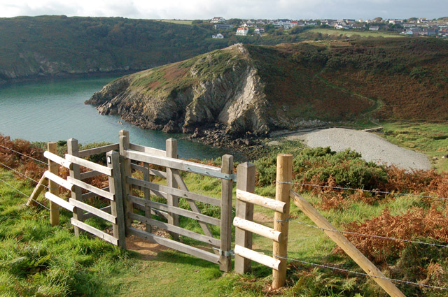 Circular walk from Solva to St Elvis and Dinas Fawr (31)
