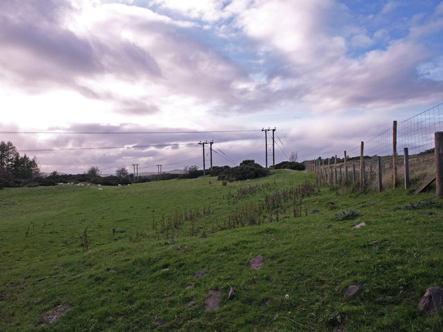 Grazing to the North-East of Kilmacolm