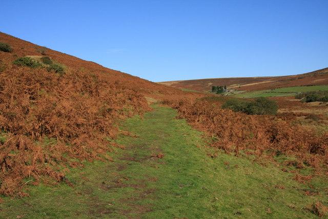 Bridleway to Headland Warren