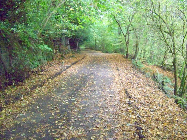 Track near Lornty