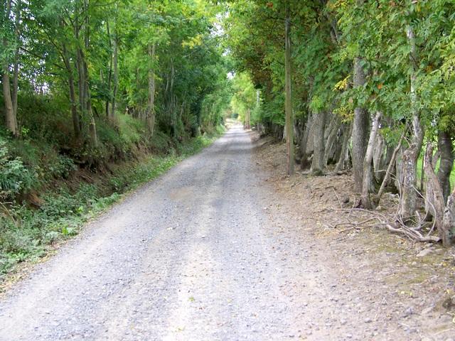 Cateran Trail, Lornty
