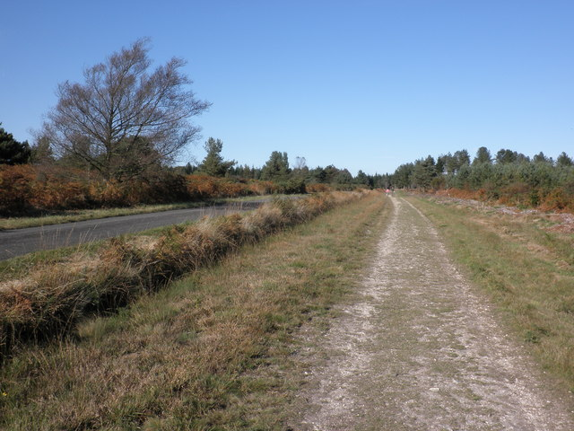 Track, on Ideford Common, running parallel with Rixafer Road