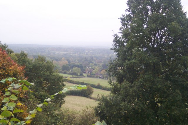 View from Carter's Hill