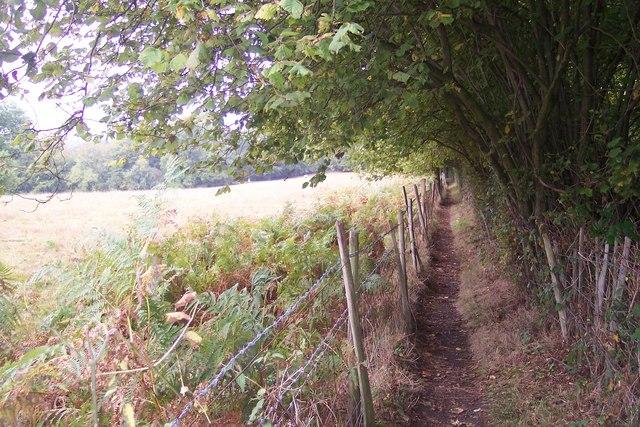 Greensand Way near Chestnut Plantation