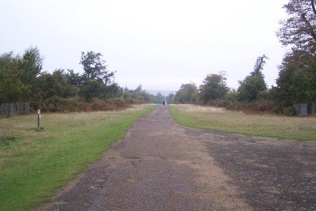 Broad Walk in Knole Park