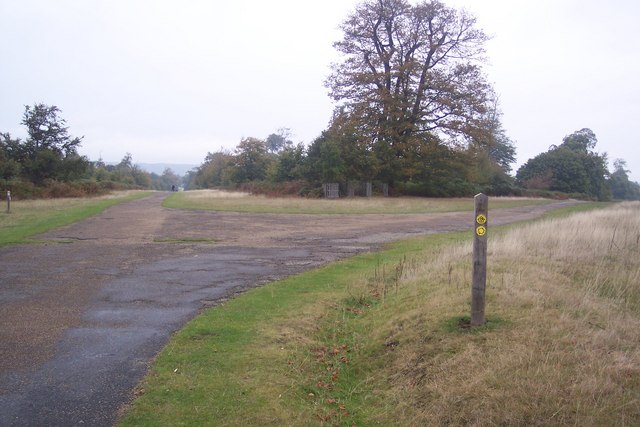Junction of Broad Walk and Chestnut Walk in Knole Park
