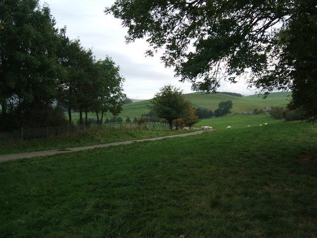 Farm road to Wharton Hall