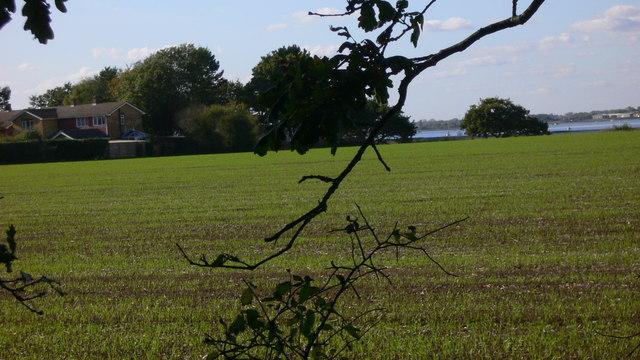 Field on Hayling Island