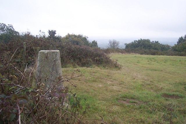 Trig Pillar near Beechmont Bank