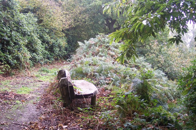 Bench in Beechmont Bank