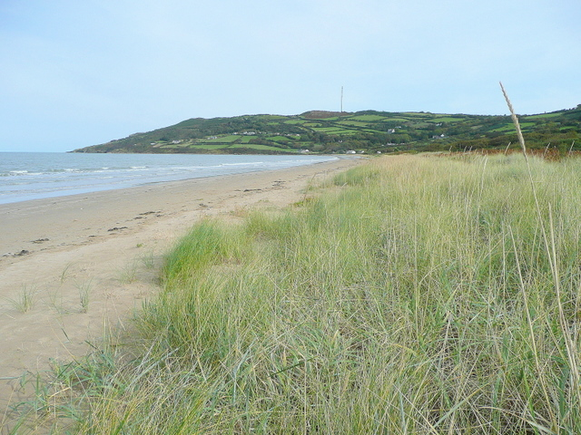 Grassy dunes of Red Wharf Bay