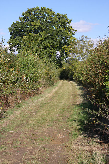 Restricted byway at Rougham