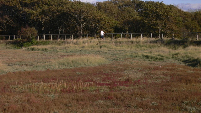 Runner on the Hayling Billy Coastal Path