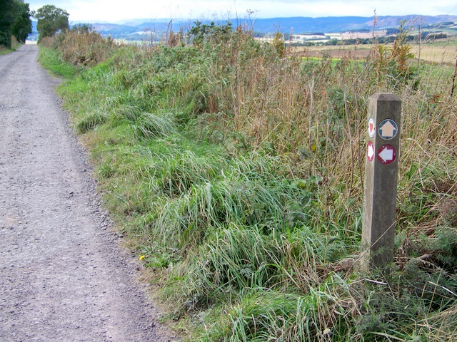 Cateran Trail above Blairgowrie
