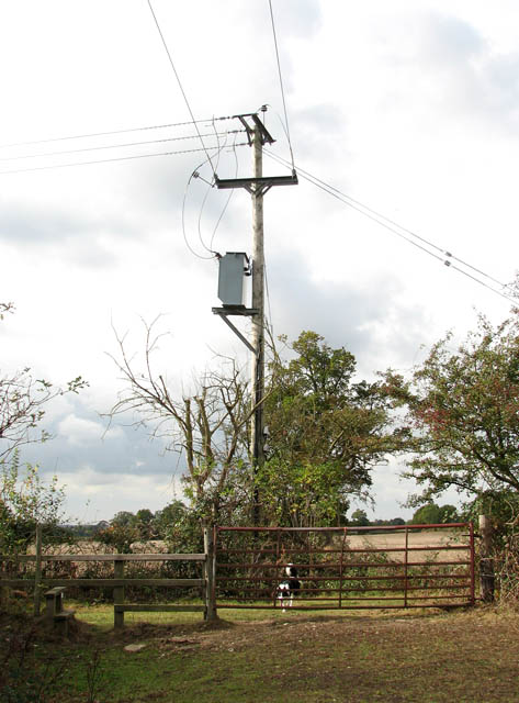 Transformer by Grove Farm