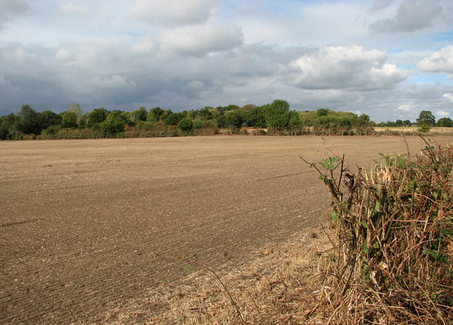 A recently drilled field