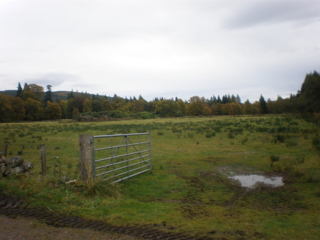 Open Gate to pasture land by Moy Hall