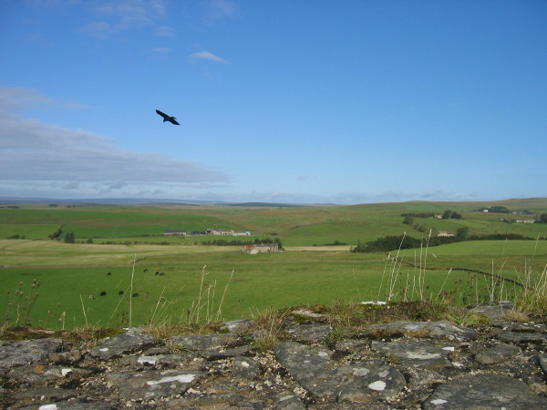 View from Hadrians Wall