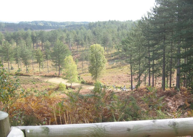 Wareham Forest Viewpoint - Looking NW