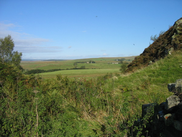 Thorny Doors  site of Turret 41B Hadrian's Wall