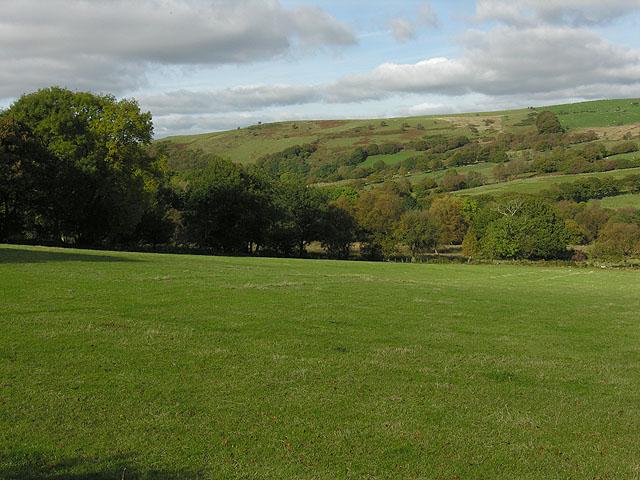 Field east of Llwyngaru
