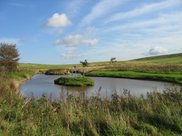 Pond at Saughy Rigg