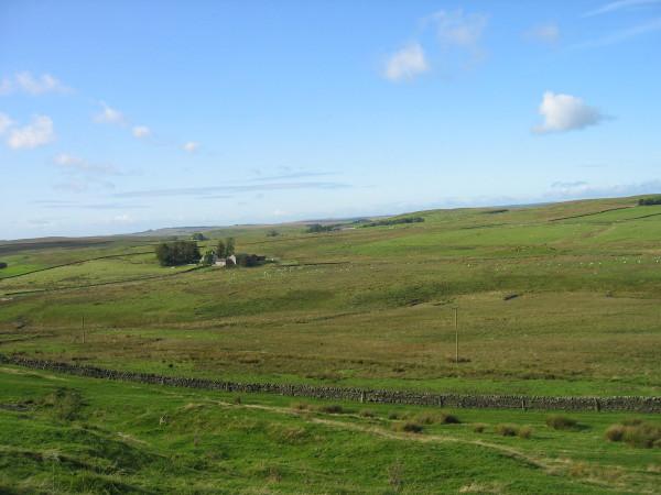 View towards Wealside Farm