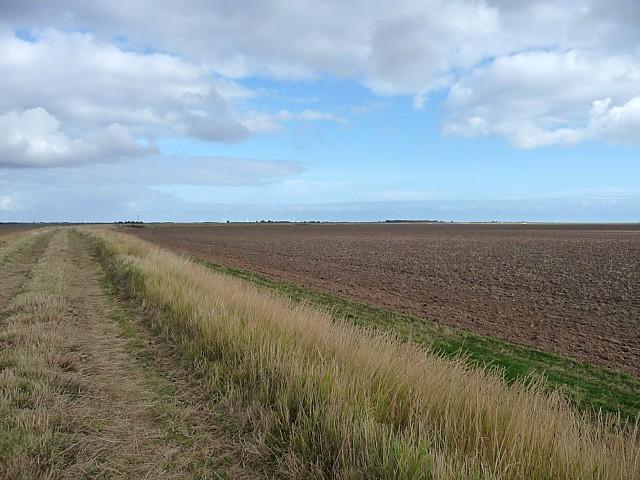 Farmland near Wainfleet (6)