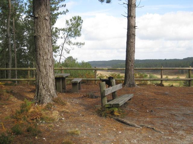Wareham Forest Viewpoint - Looking N