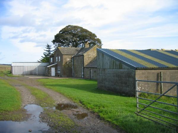 Wealside Farm
