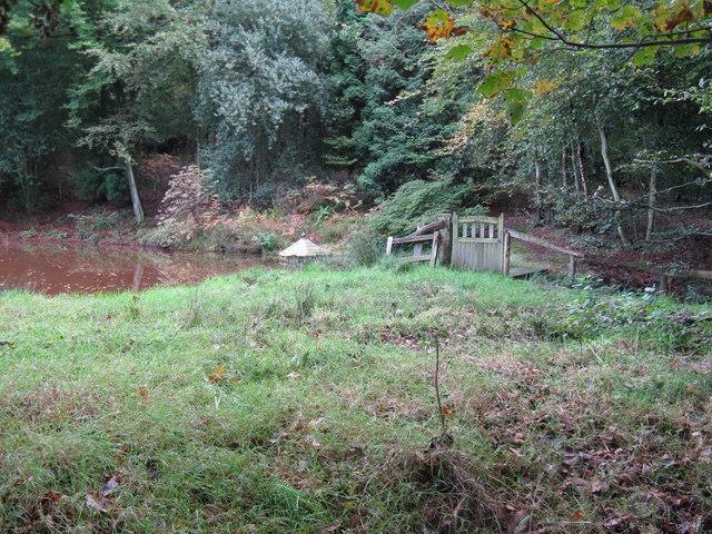 Duck house on murky pond at Smockfarthing