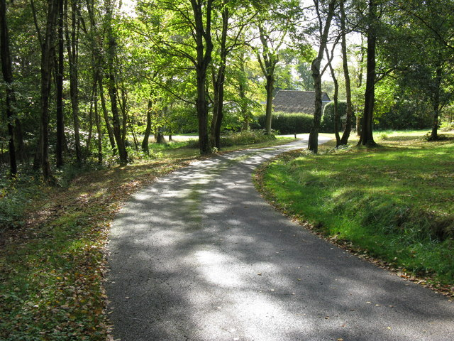 Footpath and private drive merge near Tyes Hatch